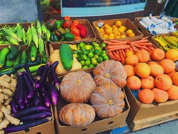 Politica Agricola Comune - photo credit: Edgar Zuniga Jr.