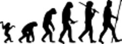 Evoluzione - immagine di M. Garde