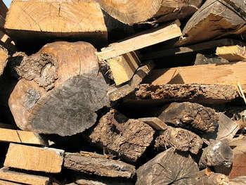 Biomasse - foto di fulgio